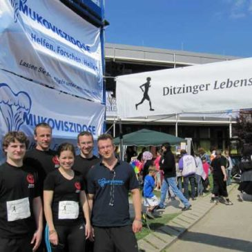 Ditzinger Lebenslauf 2011